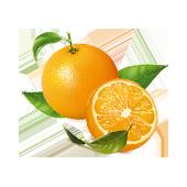 La Maison Espagnole | Naranja | Innovación y Creación de Fragancias y Cosmética| Magasalfa